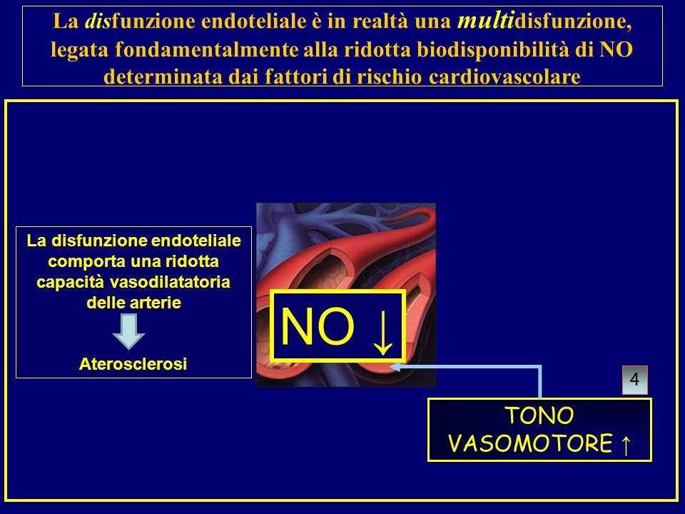 La disfunzione endoteliale è in realtà una multidisfunzione, legata fondamentalmente alla ridotta biodisponibilità di NO determinata dai fattori di rischio cardiovascolare