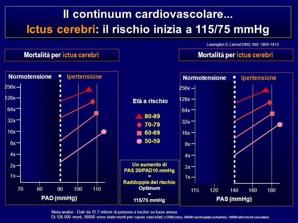 Il continuum cardiovascolare...
