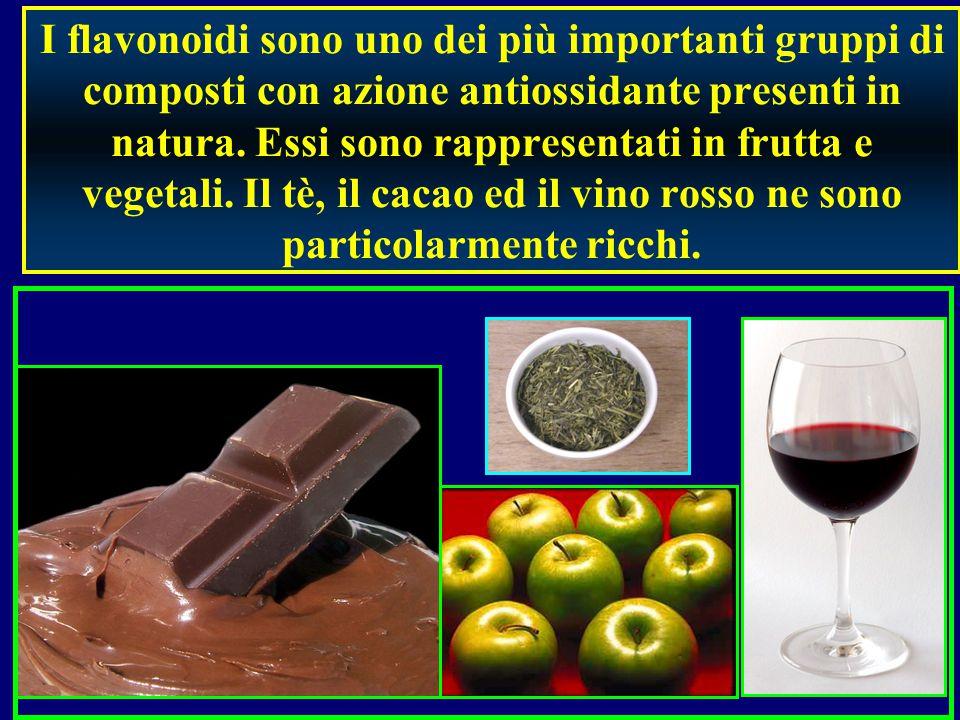I flavonoidi sono uno dei più importanti gruppi di composti con azione antiossidante presenti in natura.