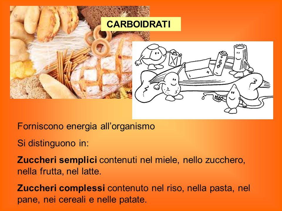CARBOIDRATI Forniscono energia all'organismo. Si distinguono in: Zuccheri semplici contenuti nel miele, nello zucchero, nella frutta, nel latte.