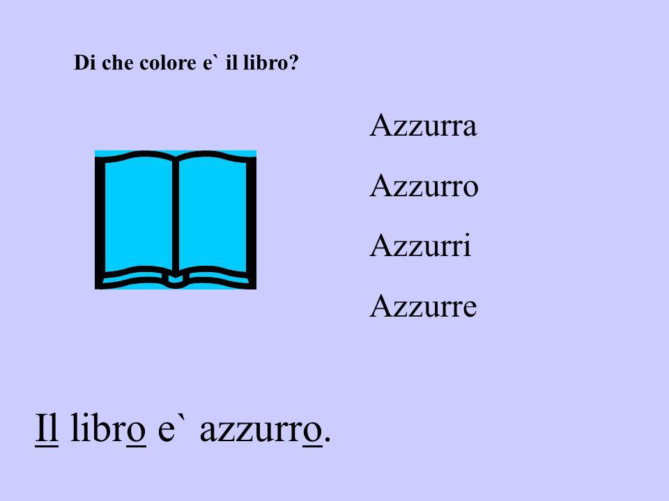 Il libro e` azzurro. Azzurra Azzurro Azzurri Azzurre