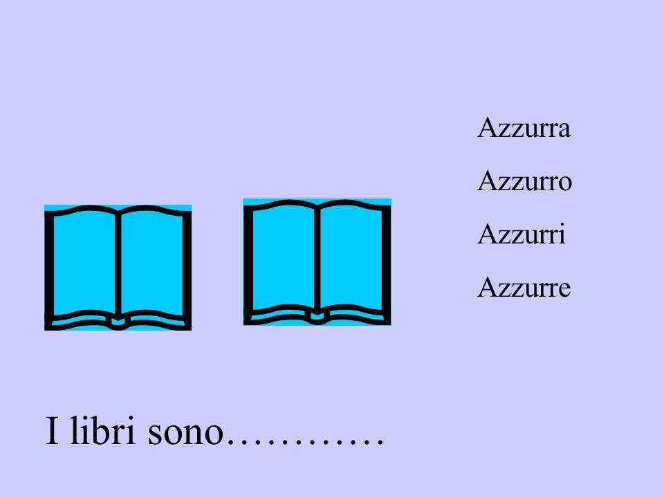 Azzurra Azzurro Azzurri Azzurre I libri sono…………