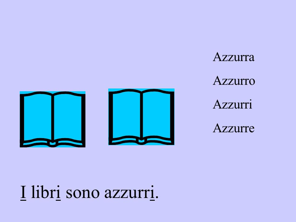 Azzurra Azzurro Azzurri Azzurre I libri sono azzurri.