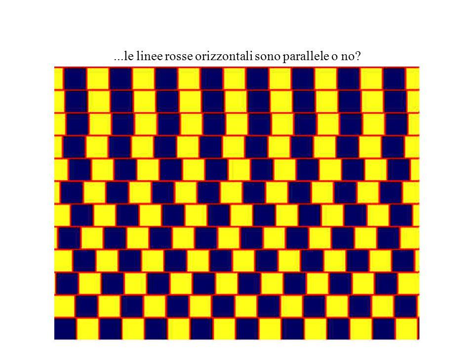 ...le linee rosse orizzontali sono parallele o no