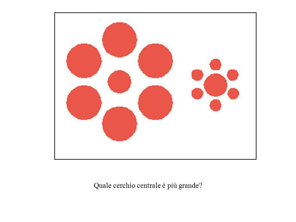 Quale cerchio centrale è più grande