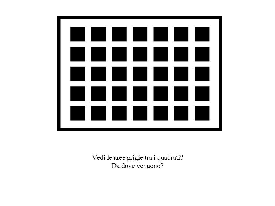 Vedi le aree grigie tra i quadrati Da dove vengono