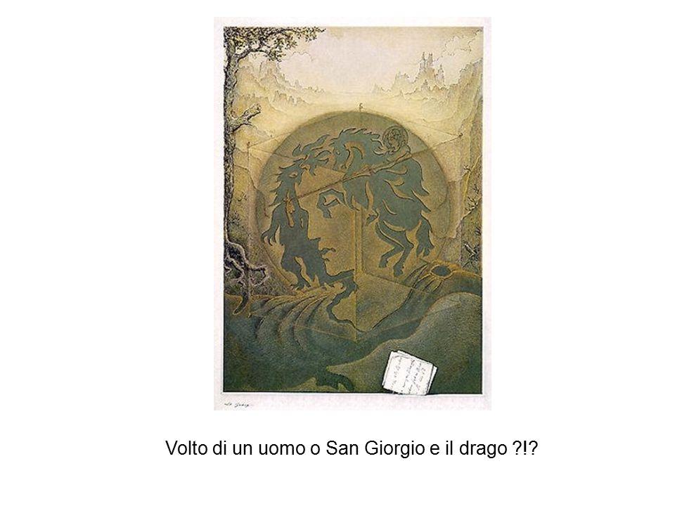 Volto di un uomo o San Giorgio e il drago !