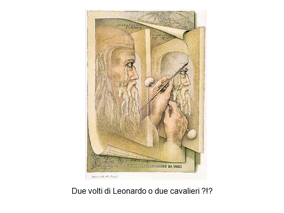 Due volti di Leonardo o due cavalieri !