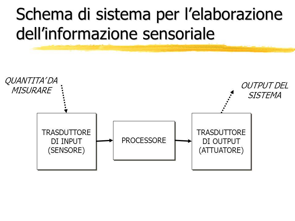 Schema di sistema per l'elaborazione dell'informazione sensoriale