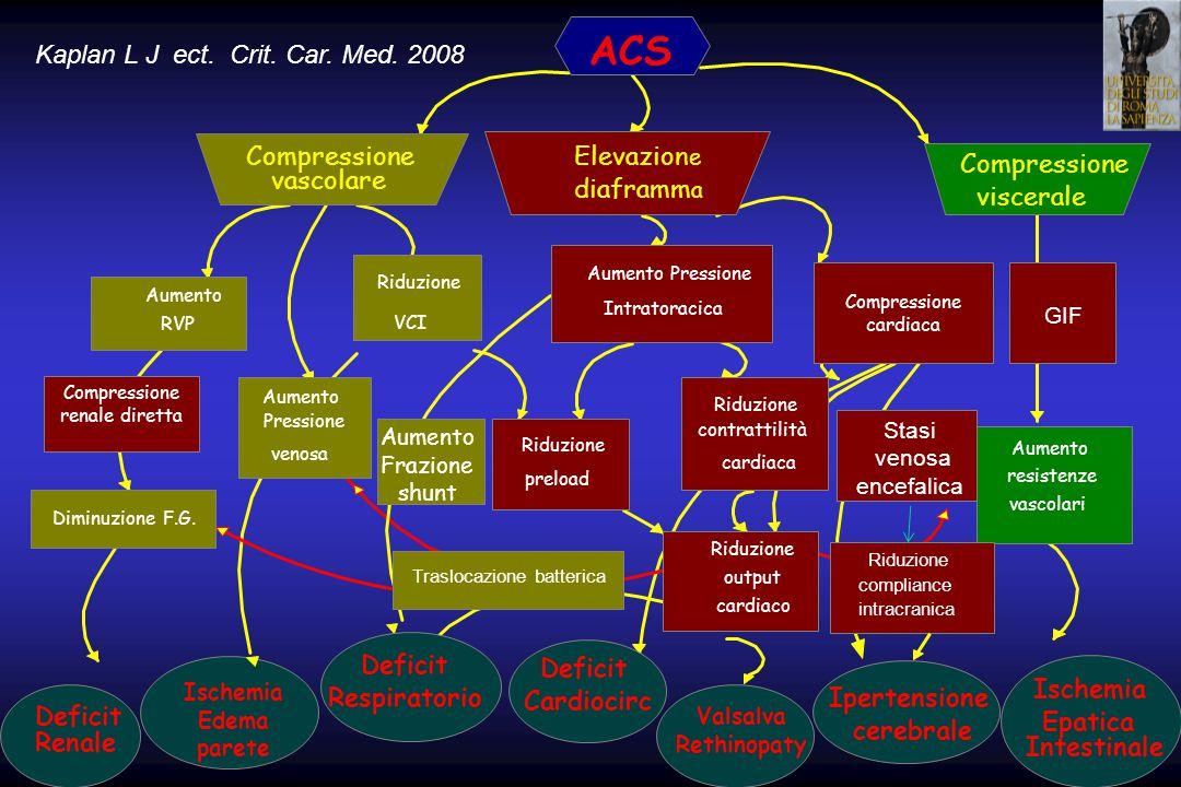 ACS Kaplan L J ect. Crit. Car. Med. 2008 Compressione Elevazione