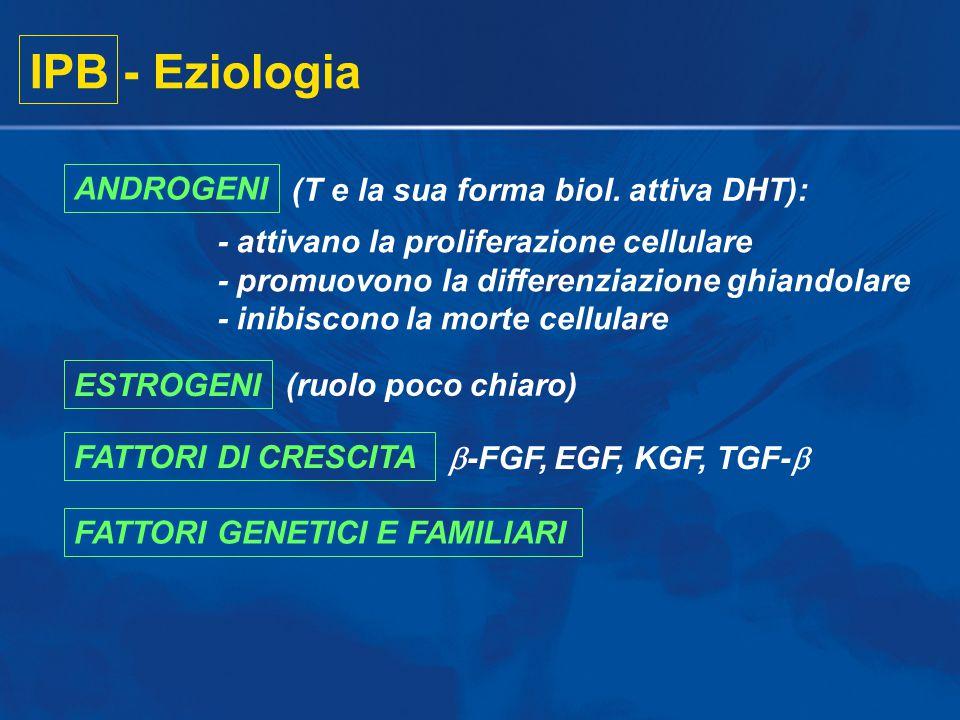 IPB - Eziologia ANDROGENI (T e la sua forma biol. attiva DHT):