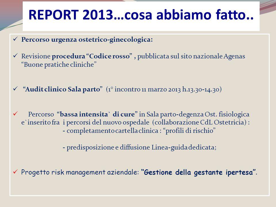 REPORT 2013…cosa abbiamo fatto..