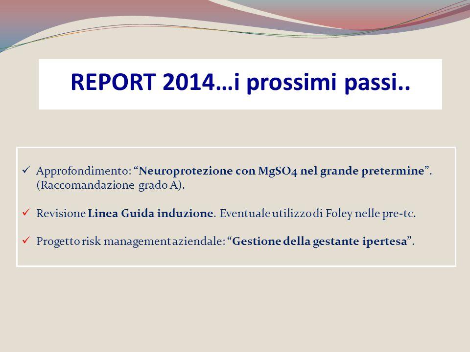 REPORT 2014…i prossimi passi..