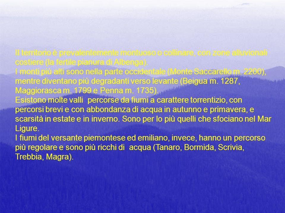 Il territorio è prevalentemente montuoso o collinare, con zone alluvionali costiere (la fertile pianura di Albenga).