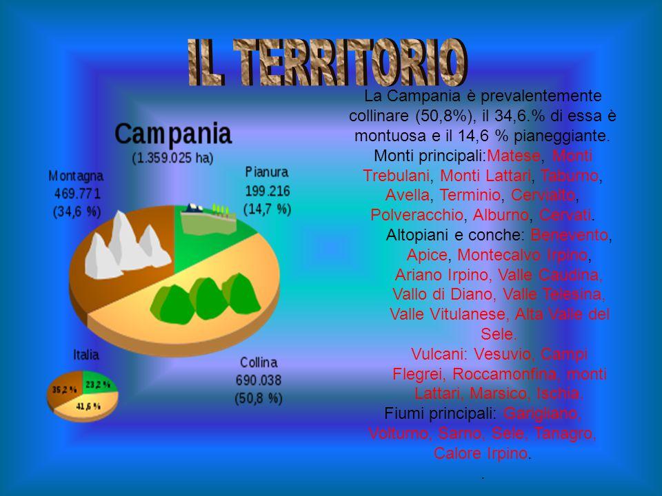 IL TERRITORIO La Campania è prevalentemente collinare (50,8%), il 34,6.% di essa è montuosa e il 14,6 % pianeggiante.