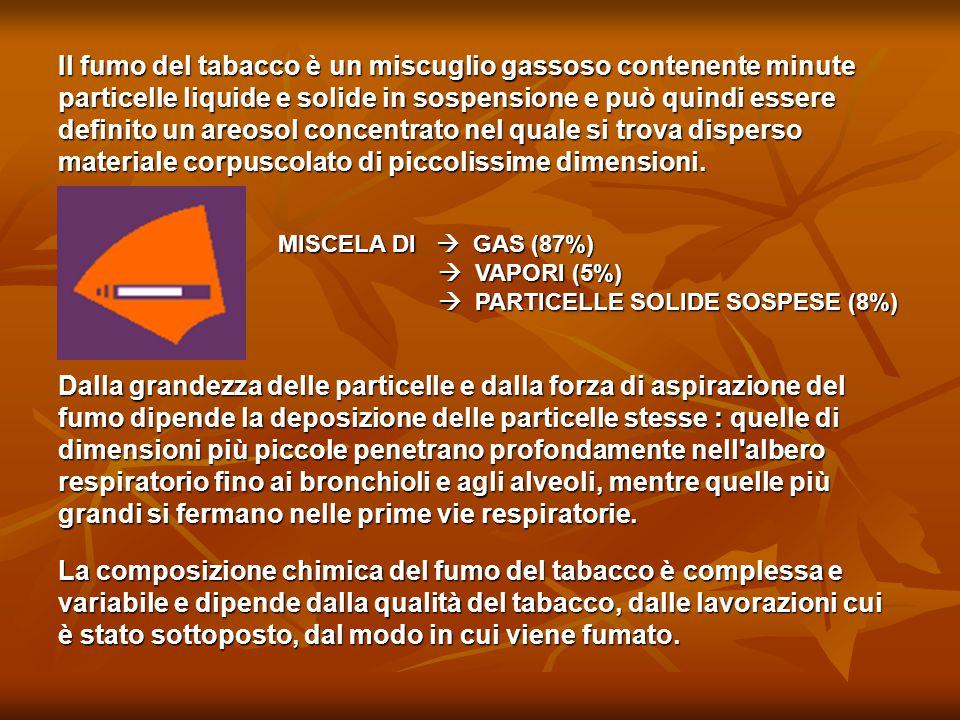 Il fumo del tabacco è un miscuglio gassoso contenente minute