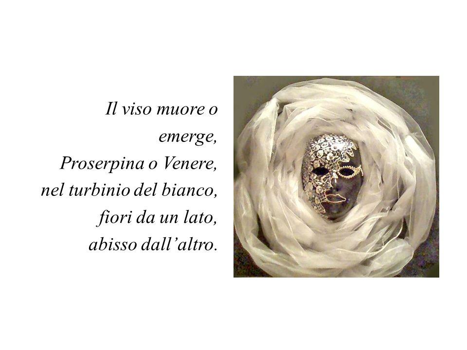 Il viso muore o emerge, Proserpina o Venere, nel turbinio del bianco, fiori da un lato, abisso dall'altro.