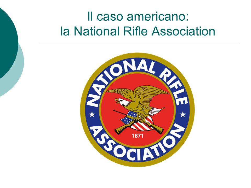 Il caso americano: la National Rifle Association