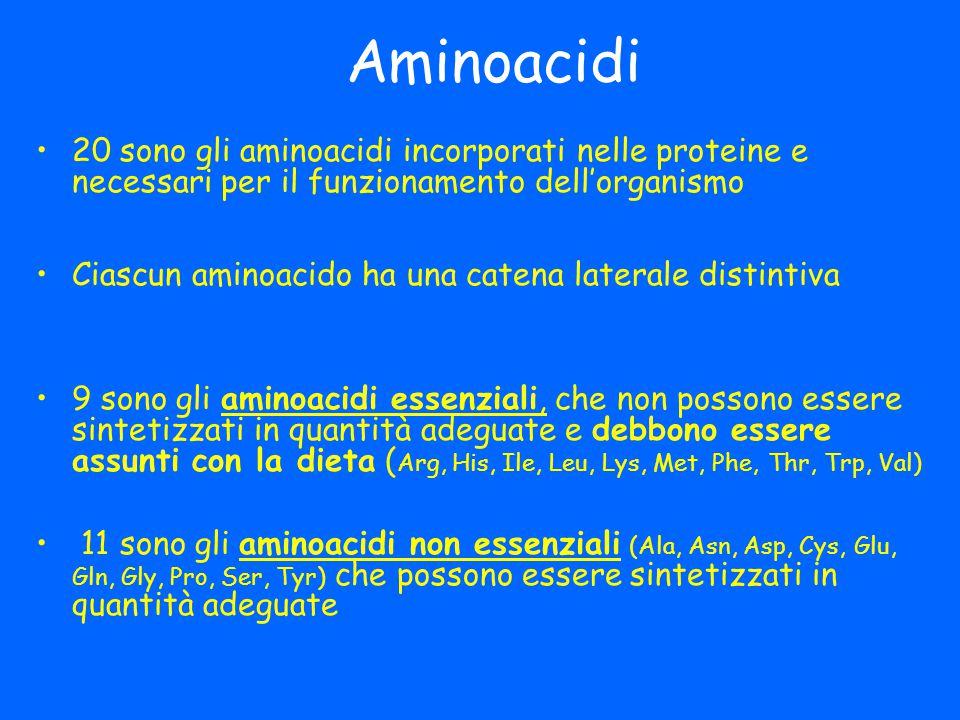 Aminoacidi 20 sono gli aminoacidi incorporati nelle proteine e necessari per il funzionamento dell'organismo.