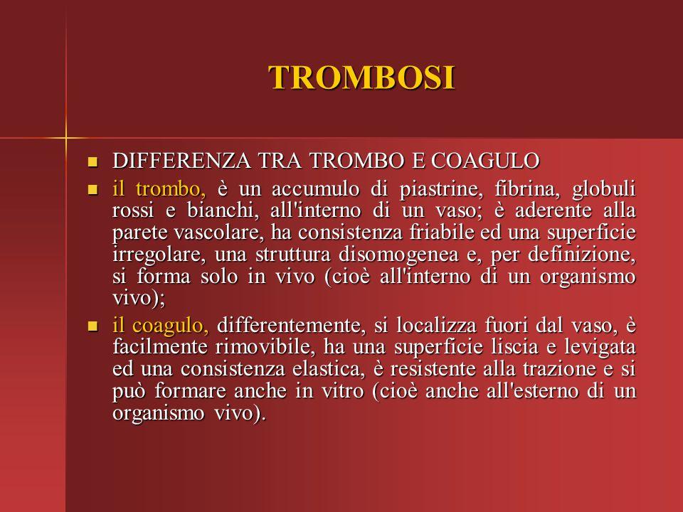 TROMBOSI DIFFERENZA TRA TROMBO E COAGULO