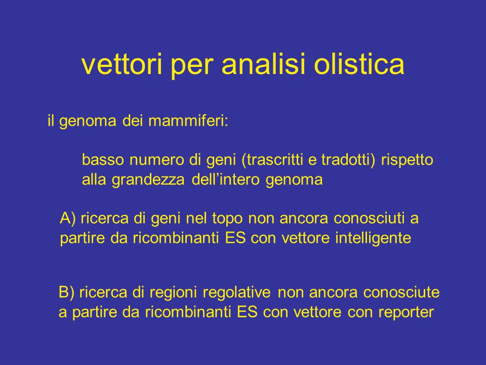 vettori per analisi olistica