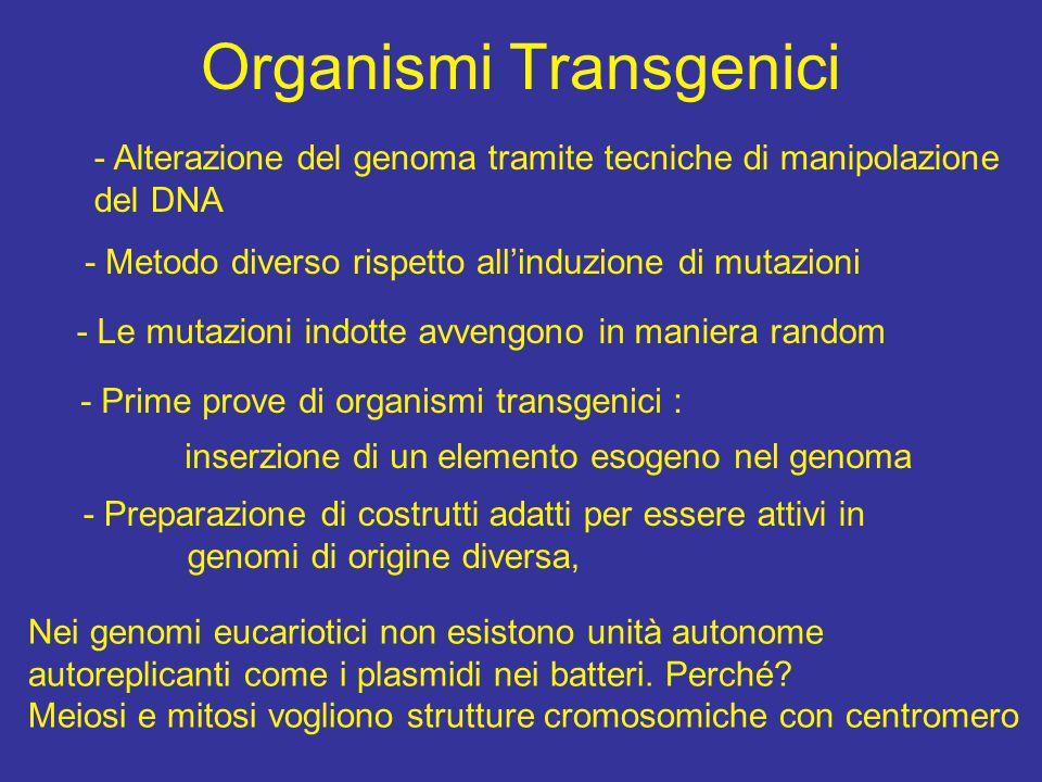Organismi Transgenici