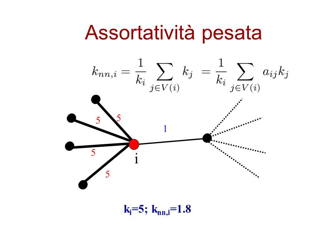 Assortatività pesata 5 5 1 5 i 5 ki=5; knn,i=1.8