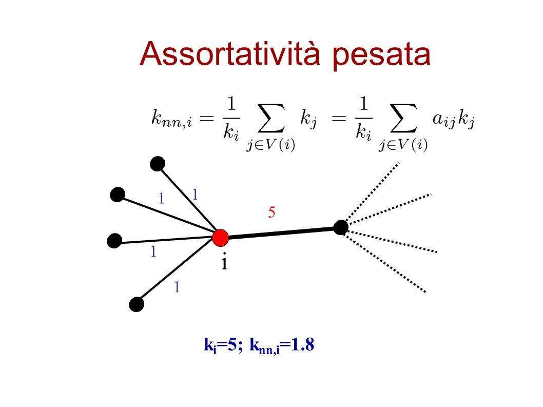 Assortatività pesata 1 1 5 1 i 1 ki=5; knn,i=1.8