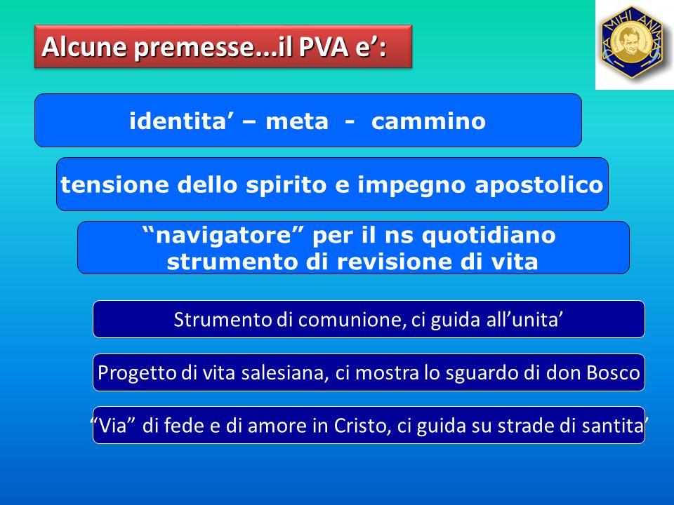 Alcune premesse...il PVA e':