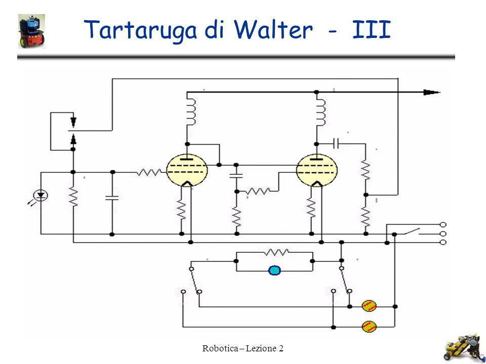 Tartaruga di Walter - III