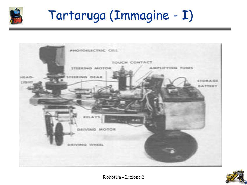 Tartaruga (Immagine - I)