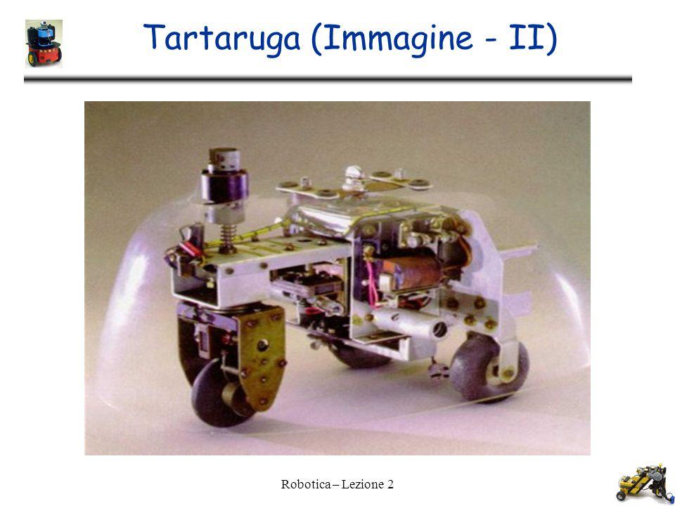 Tartaruga (Immagine - II)