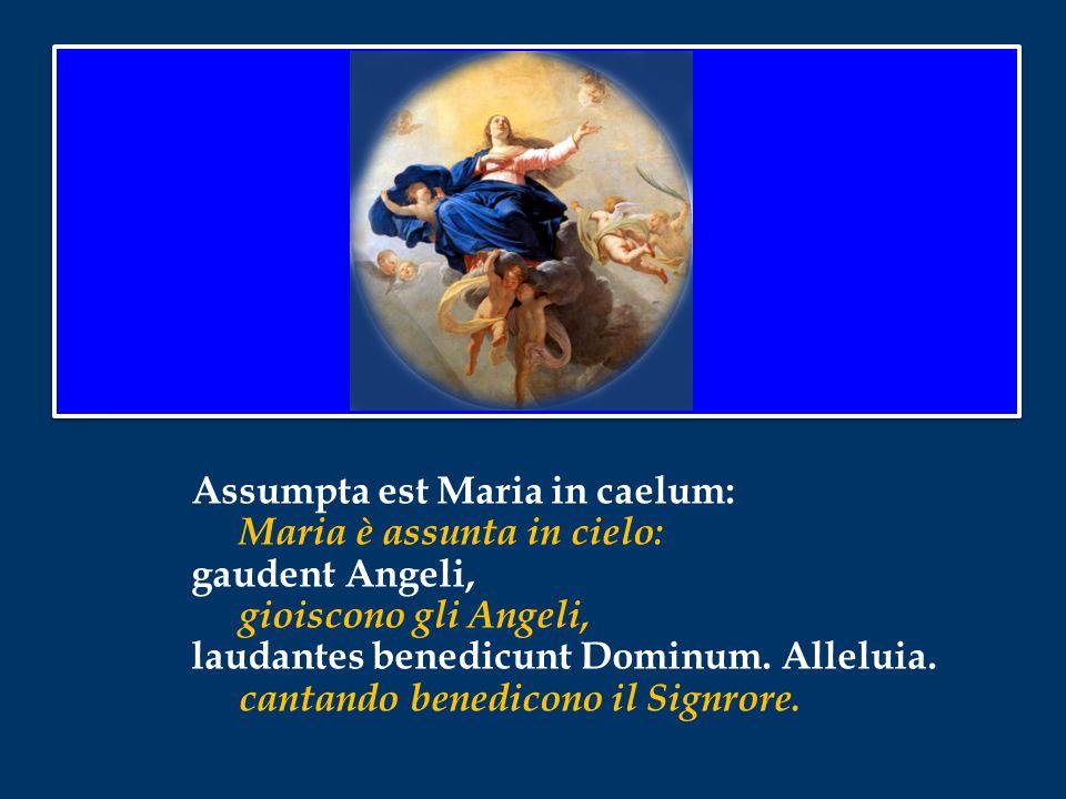 Assumpta est Maria in caelum: Maria è assunta in cielo: gaudent Angeli, gioiscono gli Angeli, laudantes benedicunt Dominum.
