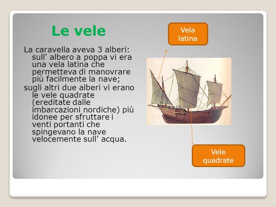 Le vele Vela latina.