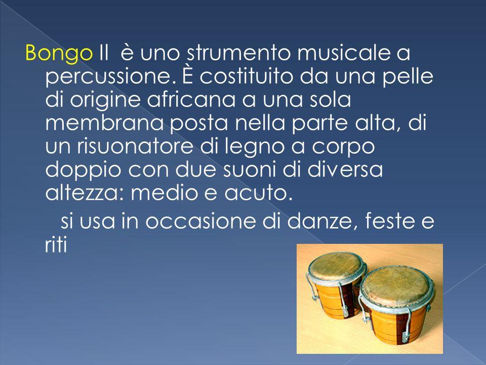 Bongo Il è uno strumento musicale a percussione