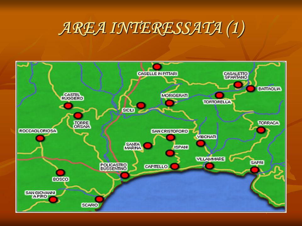 AREA INTERESSATA (1)