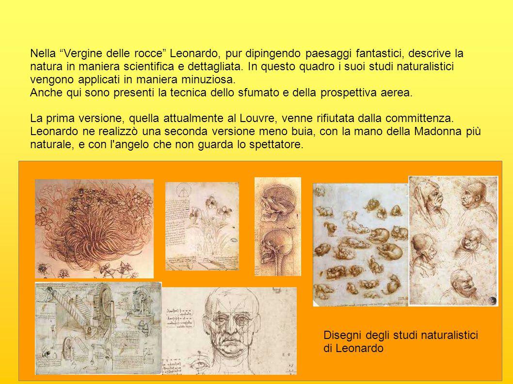 Nella Vergine delle rocce Leonardo, pur dipingendo paesaggi fantastici, descrive la natura in maniera scientifica e dettagliata. In questo quadro i suoi studi naturalistici vengono applicati in maniera minuziosa.