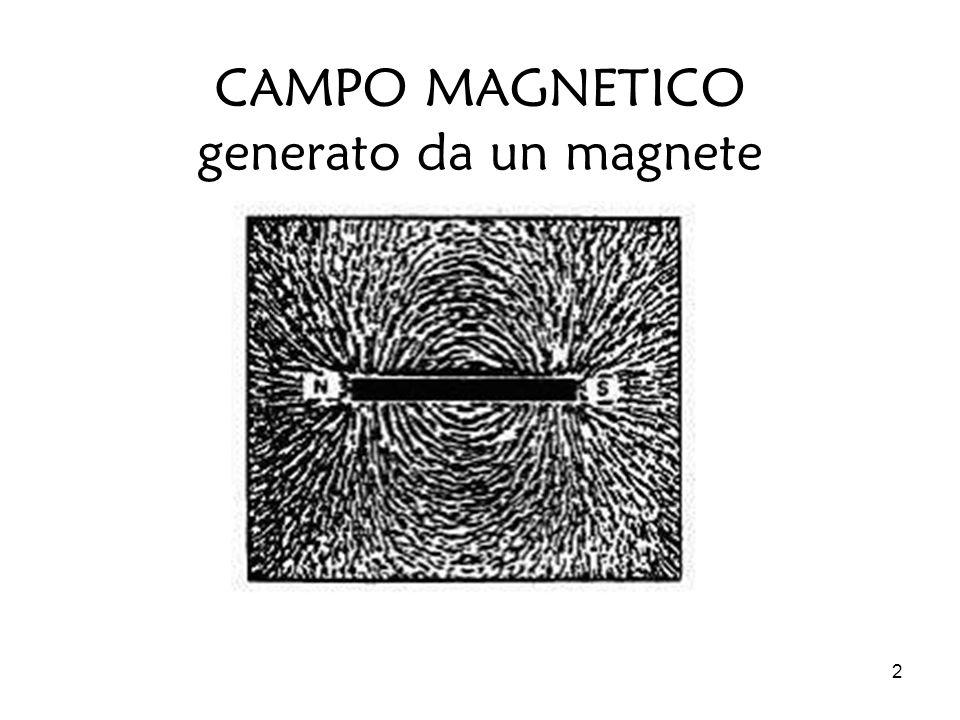CAMPO MAGNETICO generato da un magnete