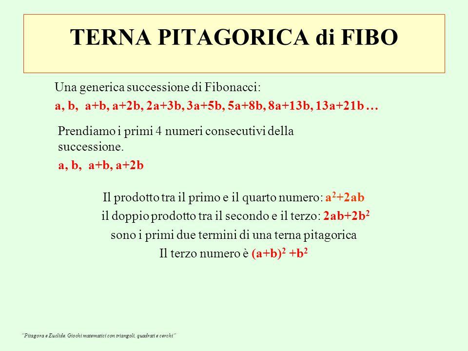 TERNA PITAGORICA di FIBO