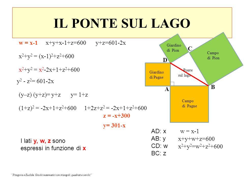 IL PONTE SUL LAGO w = x-1 x+y+x-1+z=600 y+z=601-2x C
