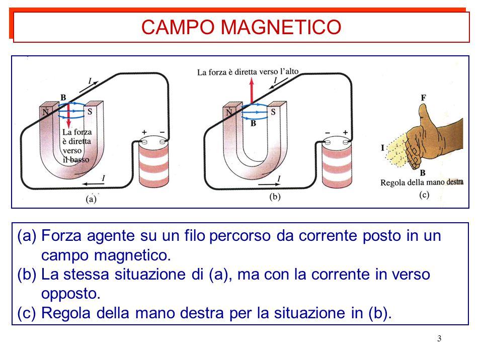 CAMPO MAGNETICO Forza agente su un filo percorso da corrente posto in un campo magnetico.