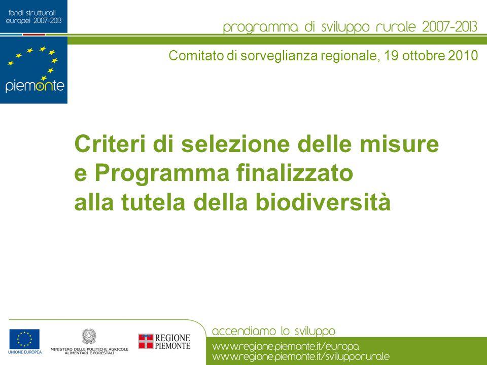 Criteri di selezione delle misure e Programma finalizzato