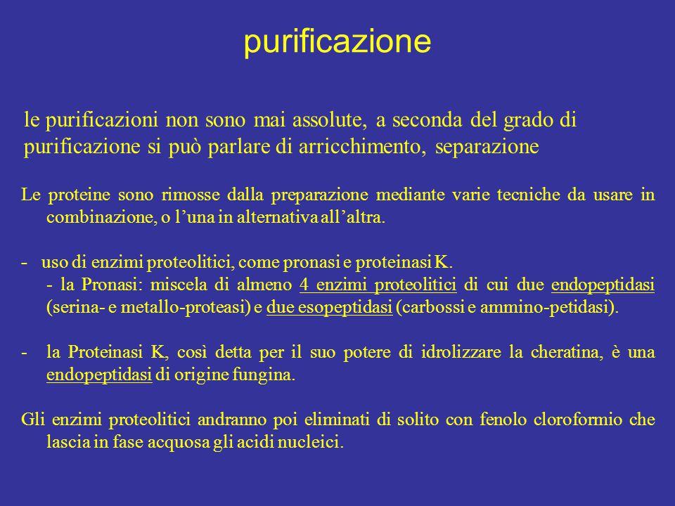 purificazione le purificazioni non sono mai assolute, a seconda del grado di purificazione si può parlare di arricchimento, separazione.