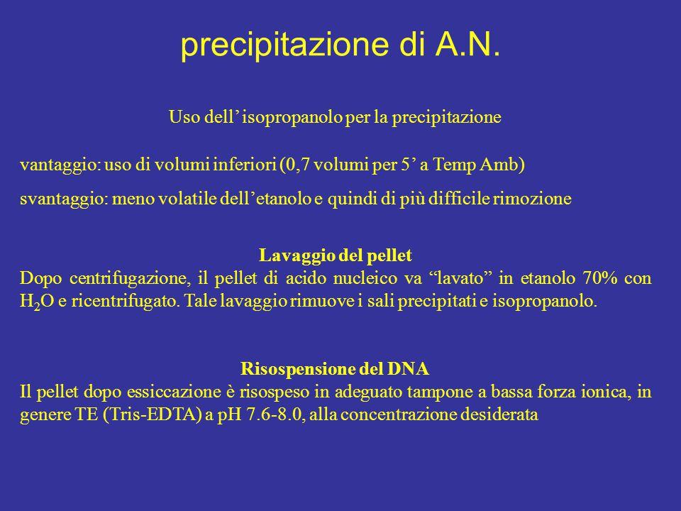 Uso dell' isopropanolo per la precipitazione
