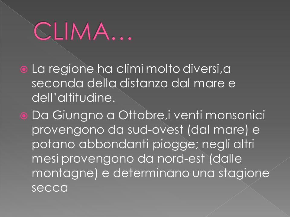 CLIMA… La regione ha climi molto diversi,a seconda della distanza dal mare e dell'altitudine.