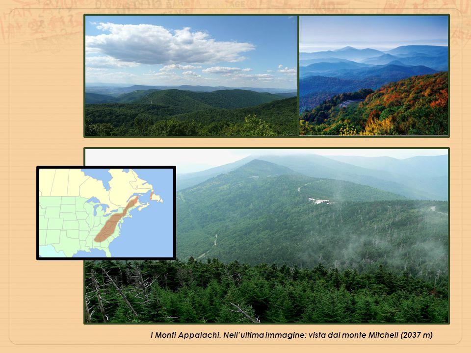 I Monti Appalachi. Nell'ultima immagine: vista dal monte Mitchell (2037 m)