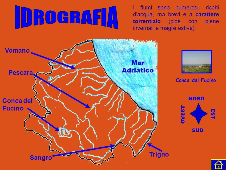 IDROGRAFIA Vomano Mar Adriatico Pescara Conca del Fucino Trigno Sangro