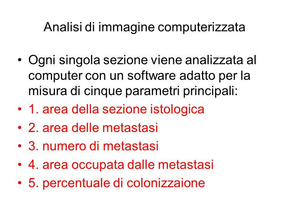 Analisi di immagine computerizzata