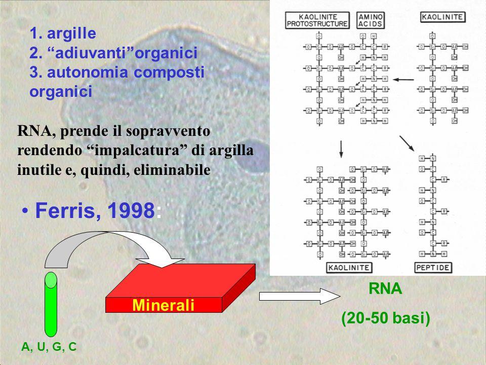 1. argille 2. adiuvanti organici 3. autonomia composti organici