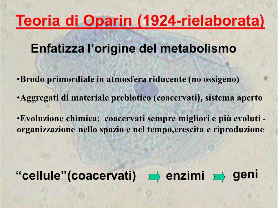 Teoria di Oparin (1924-rielaborata) cellule (coacervati)